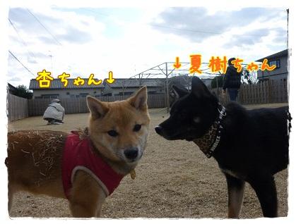 夏樹ちゃん&杏ちゃん