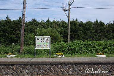 抜海駅駅名標とホーム