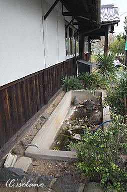 櫟本駅(JR西日本・桜井線)の枯池