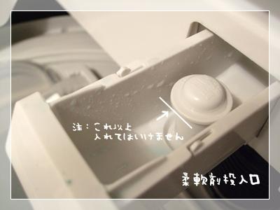 DSCF7296-.jpg