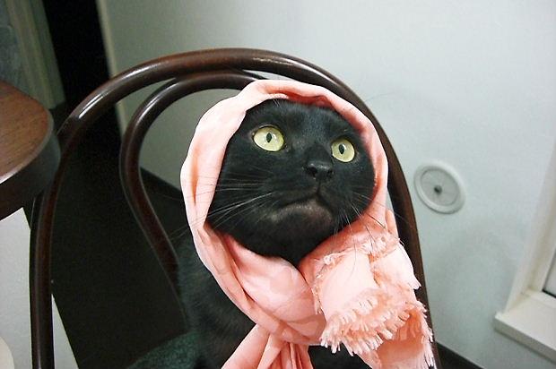 2010924ルイピンクスカーフ