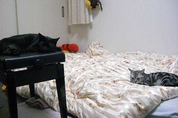 ルイ&ウェンディ20101013