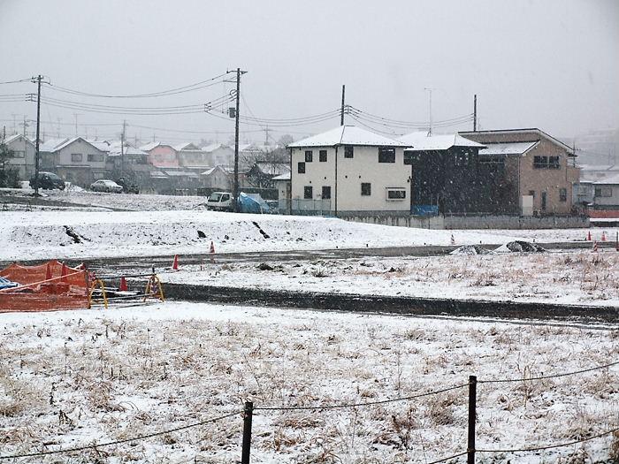syukidejiko20110211 (2)