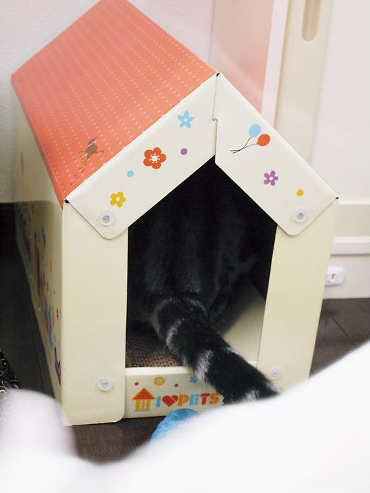 tumetogihouse20110214 (2)