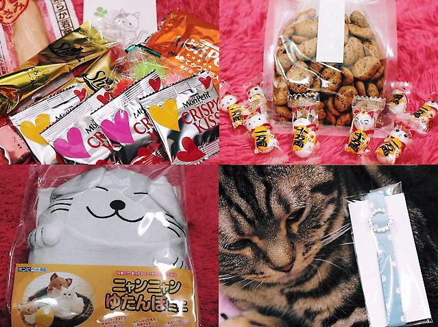 hiyosannkara20110206.jpg