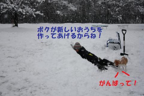 IMG_2728_convert_20110110212239.jpg