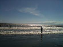 oceank.jpg