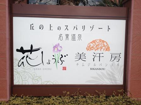 2013_02_10 (17)