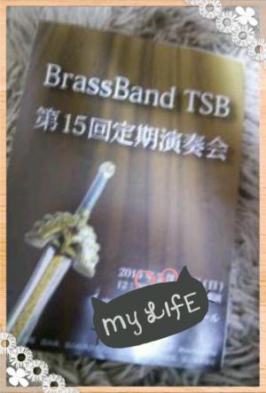 TSB300.jpg