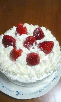 cake2009.jpg