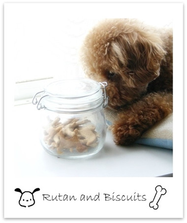 rutan and Biscuits