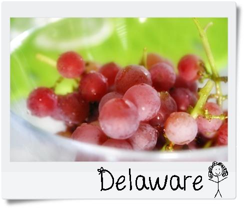 Delaware1.jpg
