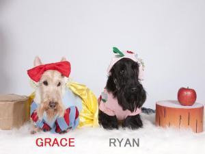 GRACE&RYAN