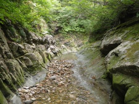 septyamagata2.jpg