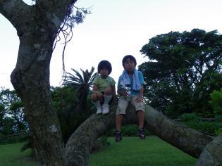 2011.6.27散歩5