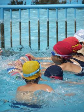 水泳大会5