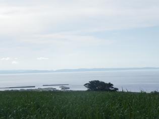 島の風景2011.7.31