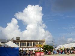 2011ひまわり祭り9