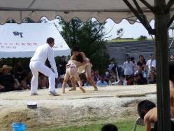 2011.10.30わんぱく相撲1