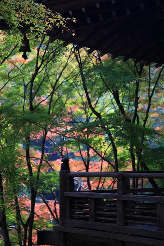 愛宕念仏寺(おたぎねんぶつじ)