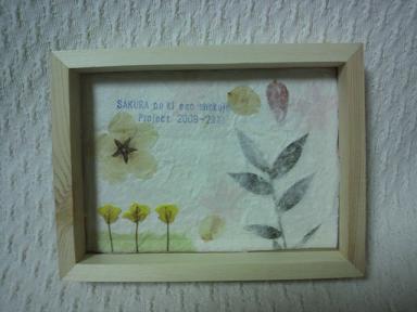 桜の木エコ植樹プロジェクト!2009-2010 3