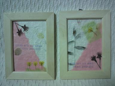 桜の木エコ植樹プロジェクト!2009-1020 7