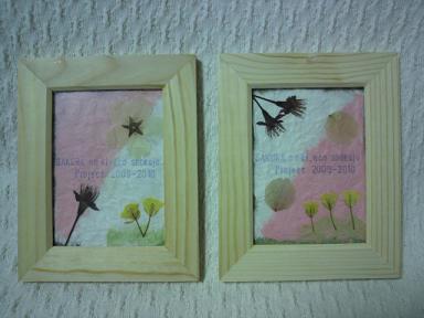 桜の木エコ植樹プロジェクト!2009-1020 10