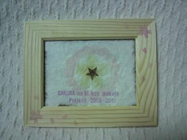 桜の木エコ植樹プロジェクト!2009-1020 11