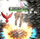 龍Eight