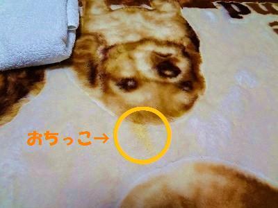 11_20130307023249.jpg