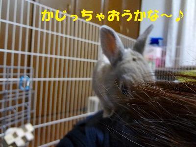 2_20130317014110.jpg