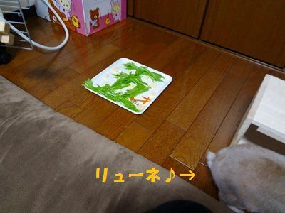 6_20130303015812.jpg