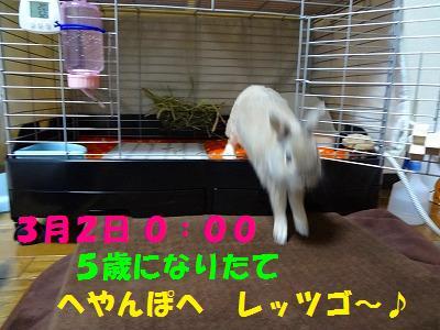 s-DSC07892.jpg