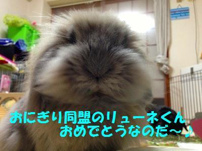 s-fc2blog_20130222213838c7e.jpg