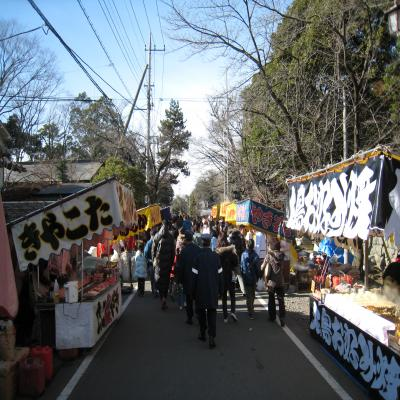 GIF_ryuusashiotuki_20100101_3.png