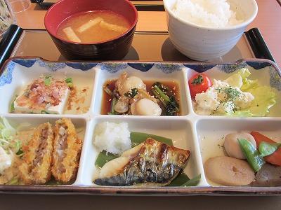 IMG_0002washoku.jpg