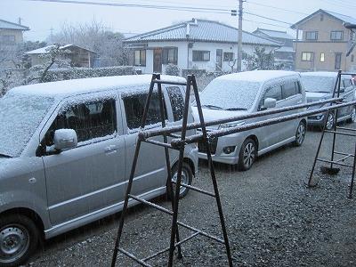 IMG_0152yuki.jpg