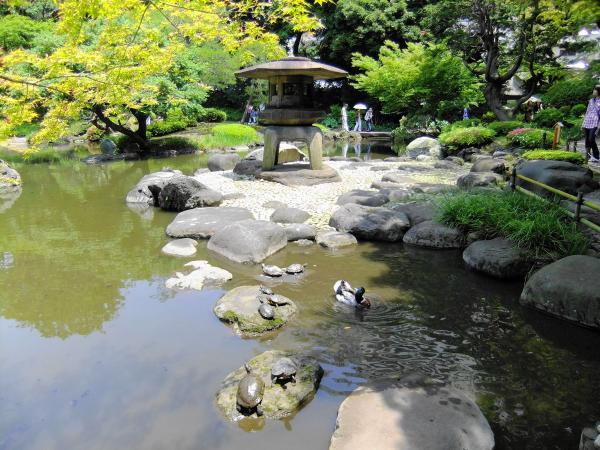 旧古河庭園・日本庭園6〔フリー写真〕