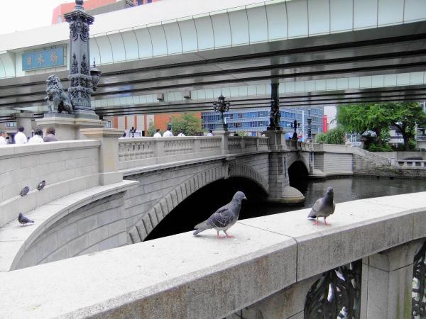 日本橋7〔フリー写真〕