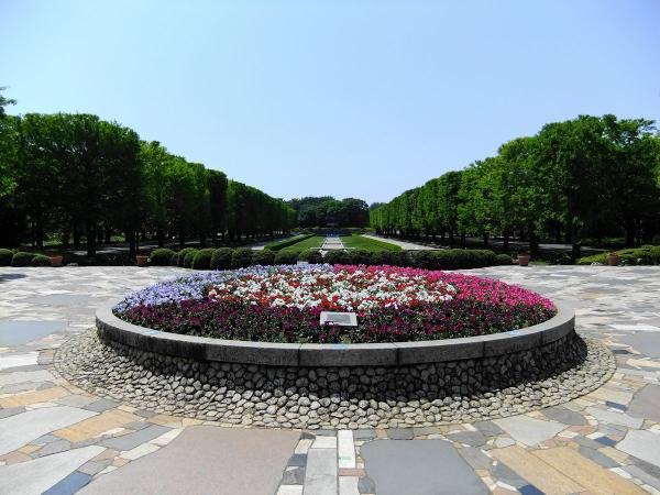 昭和記念公園2〔フリー写真〕