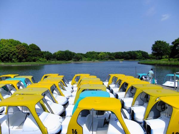 昭和記念公園6〔フリー写真〕