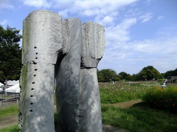 昭和記念公園7〔フリー写真〕