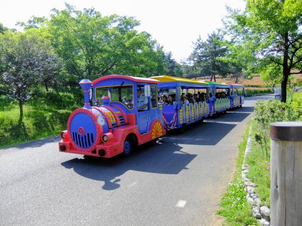 昭和記念公園9〔フリー写真〕