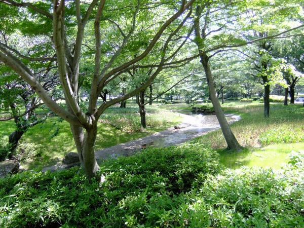 昭和記念公園14〔フリー写真〕