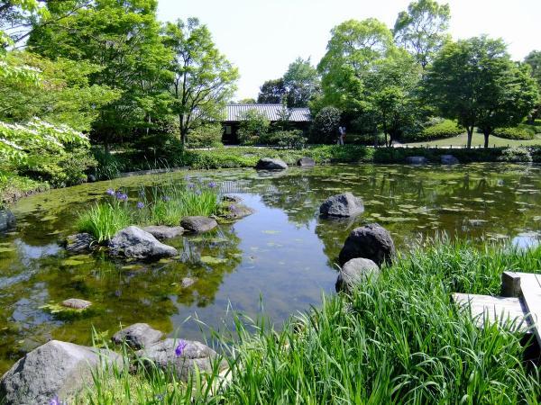 昭和記念公園・日本庭園1〔フリー写真〕