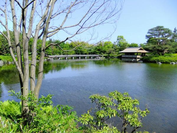 昭和記念公園・日本庭園2〔フリー写真〕