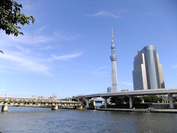 隅田川と東京スカイツリー4〔フリー写真〕