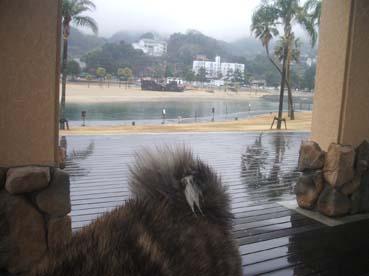 雨ビーチ3