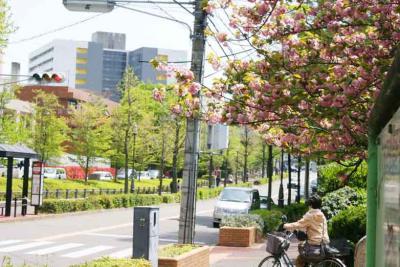鶴舞公園うらの坂道