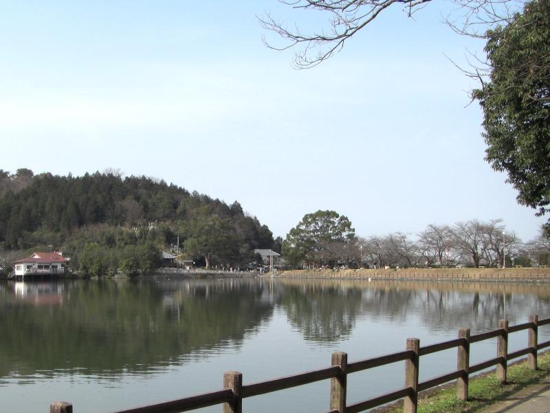 新居浜市 滝宮公園 花見スポット